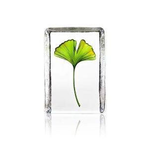 Målerås - Kristall Block Ginkgo Design Robert Ljubez