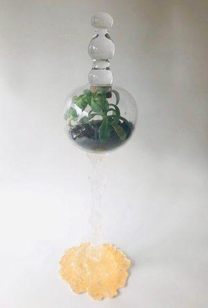 Glasprinsen - Konstglas - Biotop - Guld - Levande växt Design Matilda Kästel