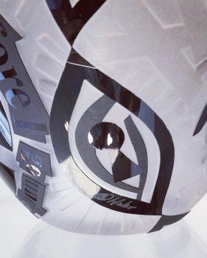 Konstglas Unikat - Pelicans - Sandblästrad 3 djup design Betina Huber